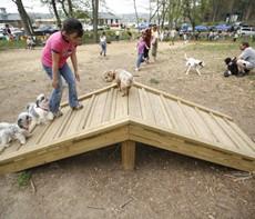 Dogwood Park Dog Park in Knoxville, TN
