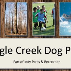 Eagle Creek Park Dog Park in Indianapolis IN