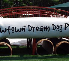 Newtown Dream Dog Park in Alpharetta GA