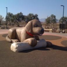 Desert Breeze Dog Park in Las Vegas NV