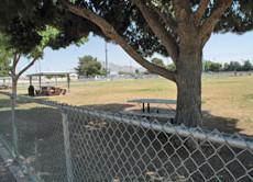 Dog Fanciers Park