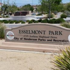 Esselmont Park Dog Park in Henderson NV