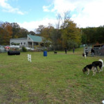 The West Milford Dog Park