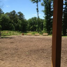 Southern Community Dog Park in Chapel Hill SC
