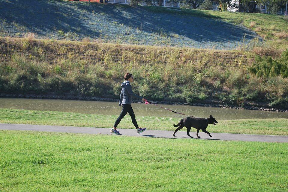 Buffalo Bayou Dog Park