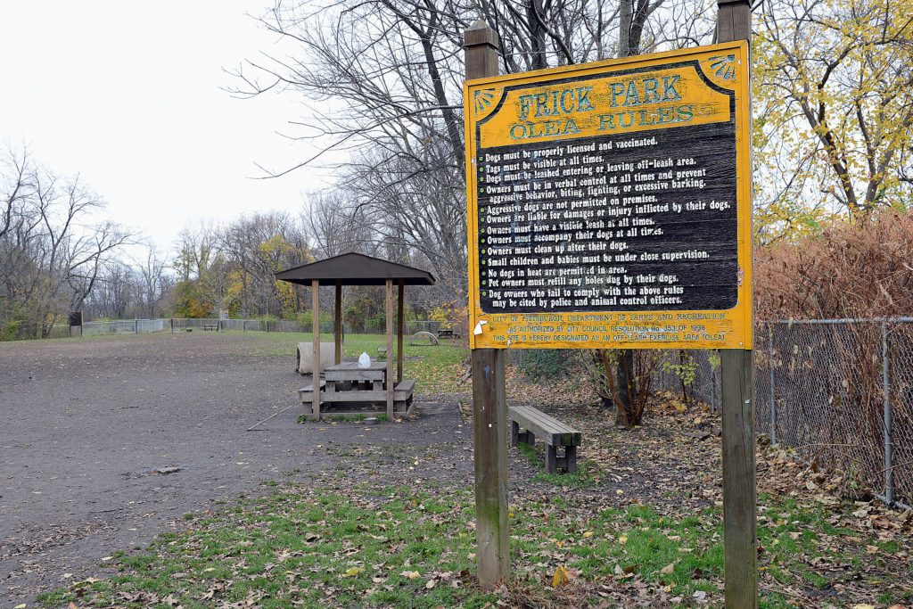 Dog Parks In Pittsburgh Pa
