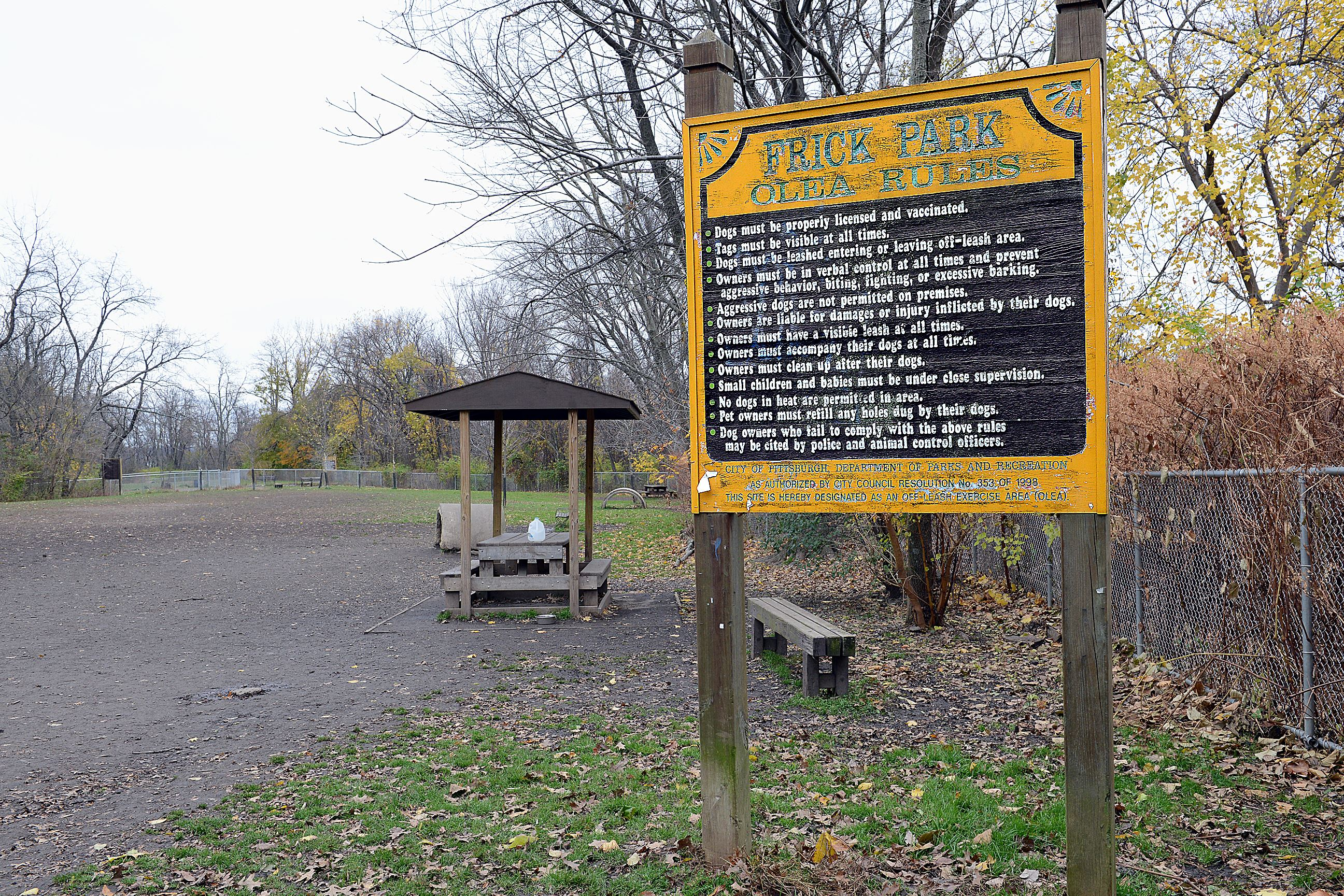 Frick Park Dog Park In Pittsburgh Pa