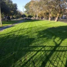 Ghent Barkely Gardens Dog Park in Norfolk VA