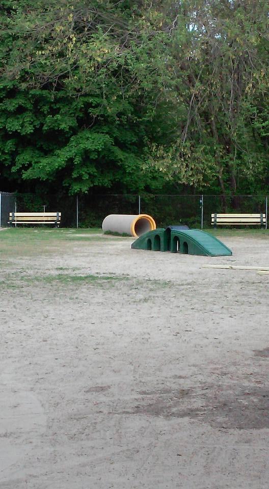 Dog Friendly Parks In Rhode Island
