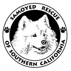 Samoyed rescue