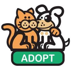 Animal Rescue Foundation, Inc.