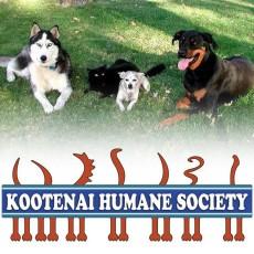Kootenai Humane Society