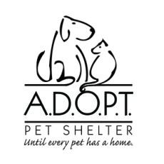 Animals Deserving Of Proper Treatment