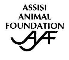 Assisi Animal Foundation