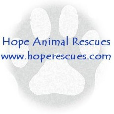 Hope Animal Rescues