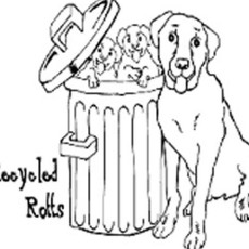 Recycled Rotts