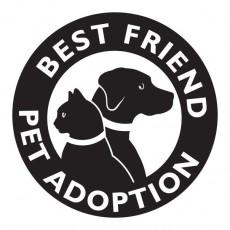 Best Friend Pet Adoption