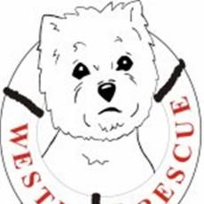 Westie Rescue of the Mid-Atlantic