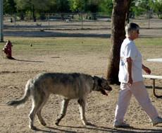 Christopher Columbus Park Tucsan AZ Dog Park