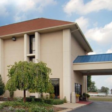 Comfort Inn Opryland Area Dog Friendly Hotel