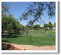 Shawnee Park Dog Park in Chandler, AZ
