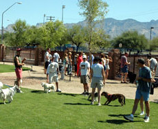 Sixth Avenue Dog Park Tuscon AZ