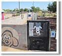 Snedigar Sportsplex Dog Park in Chandler, AZ