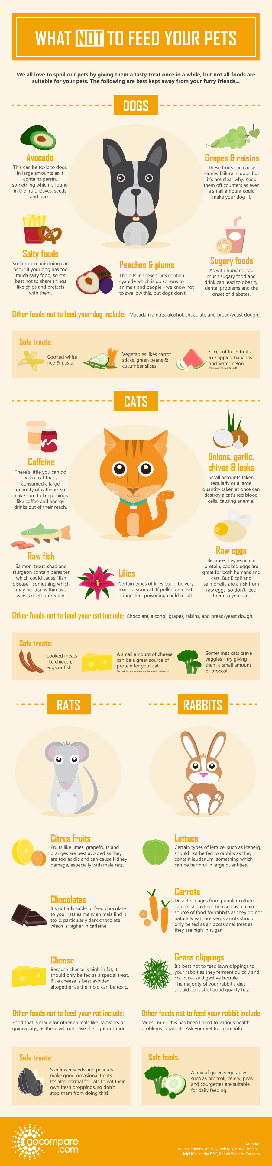What not to feed your dog info graphic