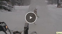 dog and snowblower