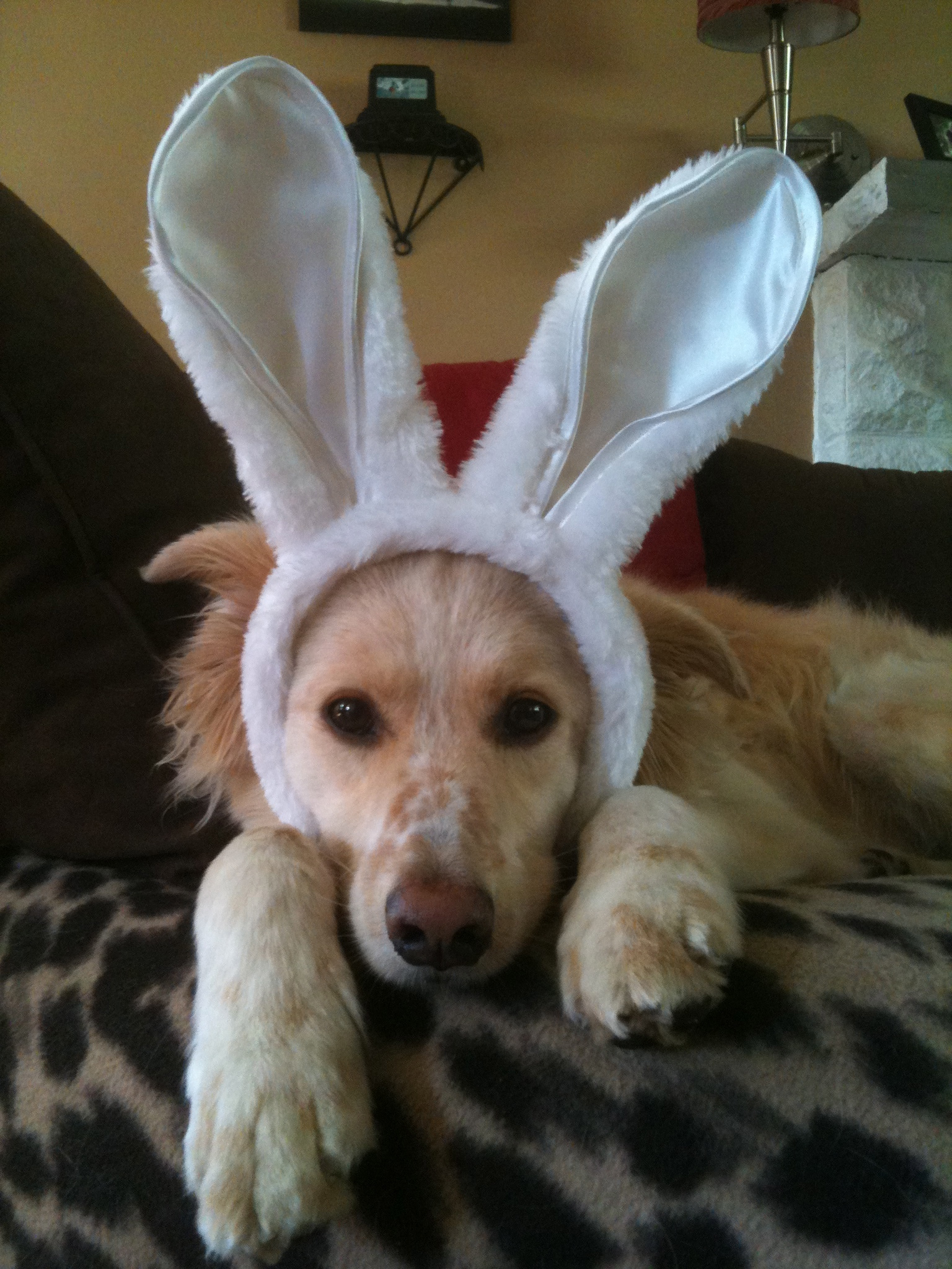 Bowie Easter Bunny