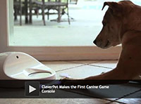 First Canine Game Console