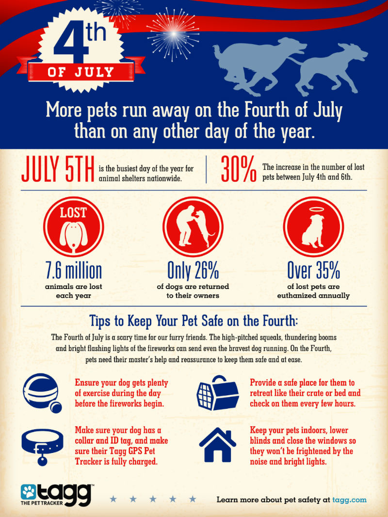 4th of July Safety Dips