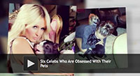 celebs and pets