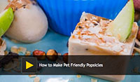 How to Make Pet Friendly Popsicles