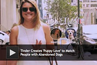 Tinder Creates Puppy Love