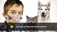 Dogs Help Prevent Asthma
