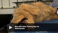 Robo Pets Make Training Real for Veterinarians