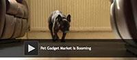 Pet Gadget Market Is Booming