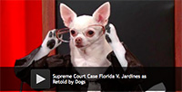 Supreme Court Case Florida V. Jardines as Retold by Dogs