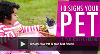10 Signs Your Pet Is Your Best Friend