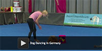 Dog Dancing in Germany