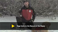 Dogs Come to the Rescue on the Slopes