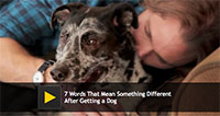 7 Words That Mean Something Different After Getting a Dog