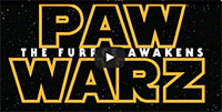 Star Wars: Episode VII – The Force Awakens (Puppy & Kitten Edition)