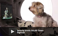 Samsung Unveils $30,000 'Dream Doghouse'