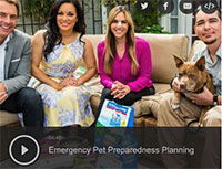 Emergency Pet Preparedness Planning