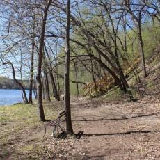 Meeker Island Dog Park St. Paul, MN