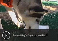 Rachael Ray's Dog Approved Food