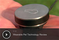 Wearable Pet Technology Review