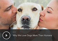 Why We Love Dogs More Than Humans